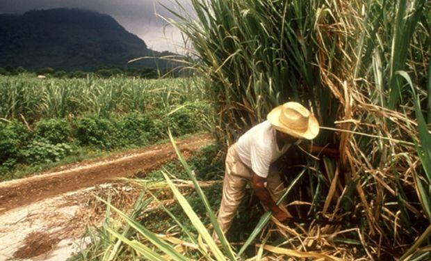 Estamos en una situación crítica porque el azúcar no tiene precio. Hay una superproducción.