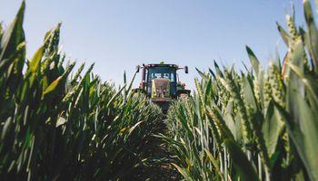 Las operaciones de canje agropecuario y los impuestos