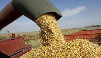 Operaciones de canje agropecuario: cómo impacta el impuesto sobre los Ingresos Brutos