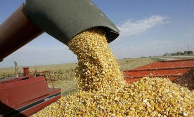 Las operaciones de canje agropecuario y el Impuesto sobre los ingresos Brutos.