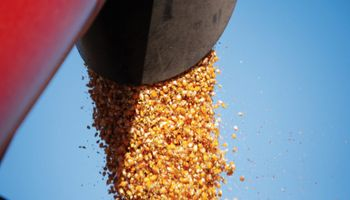 Canje agropecuario: tipos, características y tratamiento impositivo de una herramienta muy utilizada por el productor