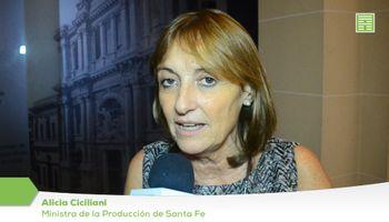 """Ciciliani: """"No hay que demonizar al que produce"""""""