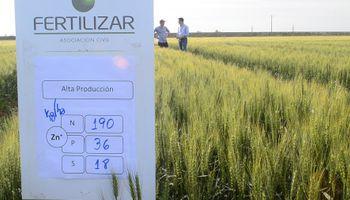 Fertilización: con buen manejo, los márgenes se duplican