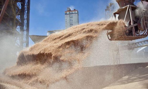 El Ministerio de Agricultura reiteró la vigencia de la normativa para liquidación de contratos de granos en dólares.