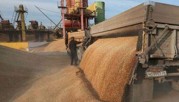 Señal para el mercado de trigo: una delegación de Estados Unidos visitó molinos en Brasil