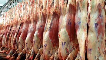 Carne: alertan que un paro en la Aduana afectaría la mitad de las exportaciones mensuales