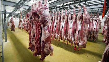 Los requisitos para ser un establecimiento certificado y exportar carne a China