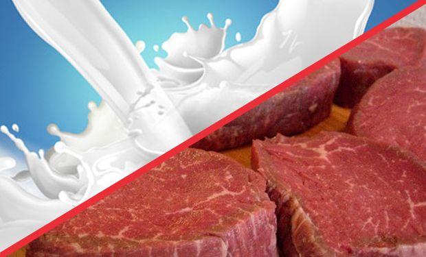 El omega 3 reduce el riesgo de sufrir enfermedades cardiovasculares.