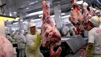 Con cupos, el Gobierno se prepara para dar fin al cierre de exportaciones de carne