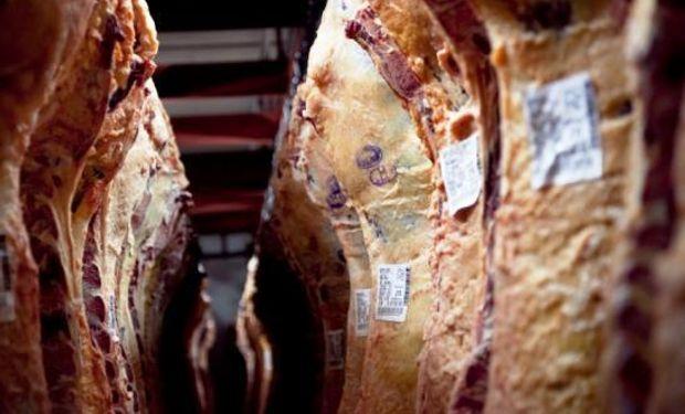Un informe de la Fundación Mediterránea (IERAL), analiza los factores del récord en exportaciones de carne vacuna, el rol de China y lo que puede pasar en 2020.