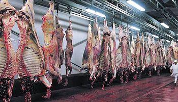 Avanzan las negociaciones para enviar carne a China