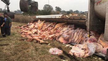Video: volcó un camión que trasladaba 17 mil kilos de carne