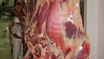 Argelia busca ampliar la compra de carne vacuna de Argentina