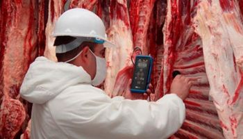 La carne argentina se acerca a China