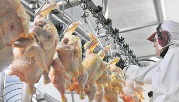 Argentina comenzará a exportar carne aviar a Canadá