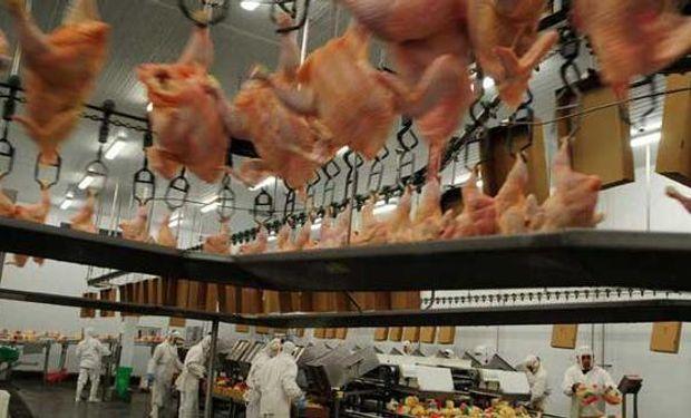 En lo que va de 2015 las exportaciones declaradas de cortes y trozos aviares congelados argentinos fueron de 36.466 toneladas.