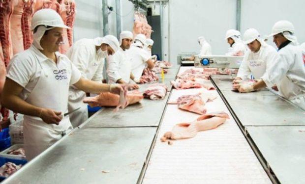 """Advierten que Estados Unidos es """"un gran emisor"""" de una enfermedad porcina complicada que, si ingresara a la Argentina, """"sería desastroso"""" para el sector."""