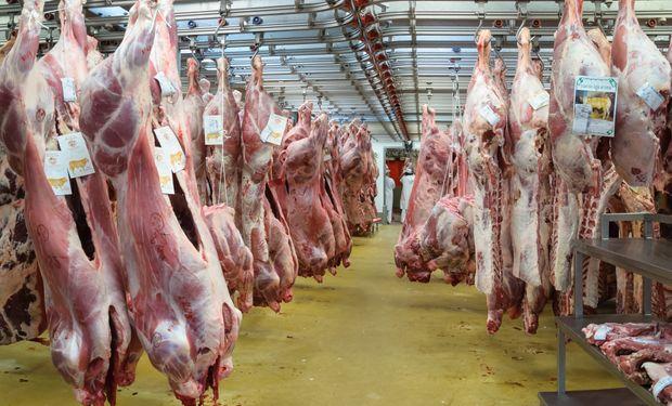 El mercado estima que llegará una oferta importante de carne vacuna a partir de los animales encerrados en feedlots.