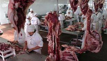 A la Patagonia se le abrieron las puertas del gran mercado