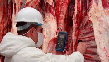 El Gobierno descarta riesgos de la importación de carne desde Brasil