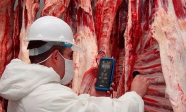 El Gobierno decidió esta semana aprobar un nuevo modelo de certificado sanitario que permite al vecino país vender dicho tipo de carne vacuna en el país.