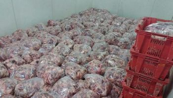 Decomisaron 8 mil kilos de carne contamida en un frigorífico de Mataderos