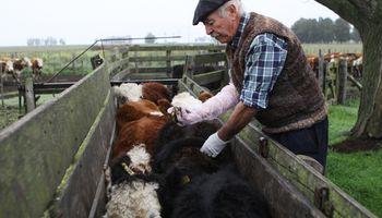 Carne: 34 entidades del sector piden eliminar las restricciones a la exportación