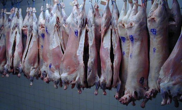 Carne ovina: Estados Unidos habilitó el ingreso desde Uruguay.
