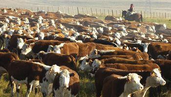 """Carne: festejan en Uruguay el cierre argentino, pero solo en el corto plazo por la """"distorsión"""" que genera en el mercado"""