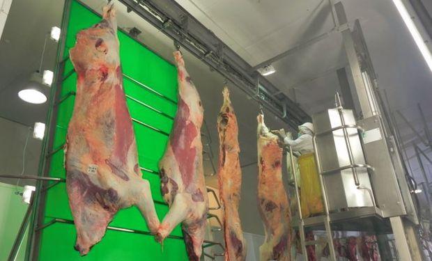 Carne uruguaya de exportación.