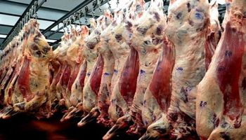 Argentina volverá a exportar carne vacuna a China