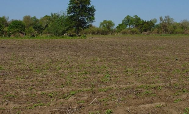 Una carta de suelos se confecciona con el objetivo de dar a conocer las propiedades del recurso.