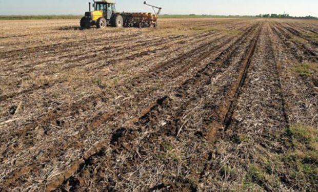 Herramientas de planificación fiscal que son útiles para la empresa agropecuaria