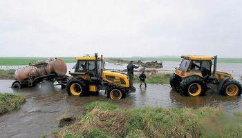 Se desplomó 40% la rentabilidad de los productores de granos