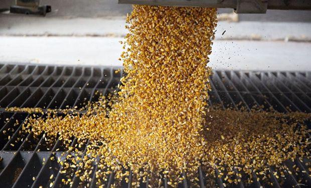 Un desarrollo de Corteva Agriscience, empresa de insumos tecnológicos agropecuarios resultado de la fusión de Dow y Dupont.