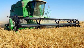 Dan por finalizada la cosecha de cebada con excelentes rendimientos