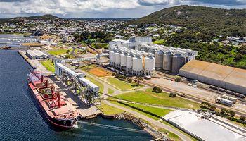 Argumentando plagas cuarentenarias, China suspendió la importación de cebada de la principal exportadora de Australia