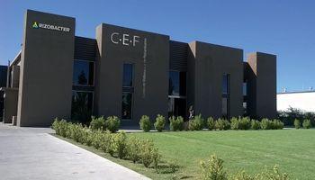 CEF Rizobacter: desarrollo tecnológico y producción local con proyección global