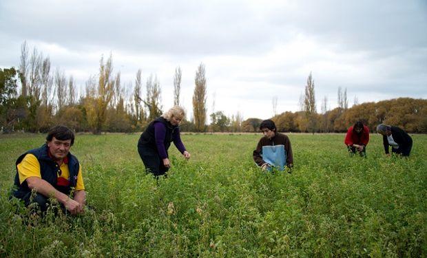 El último censo agropecuario que se realizó de manera completa fue en el año 2002.