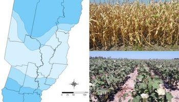 Déficit hídrico, una realidad que viene afectando a la producción agrícola
