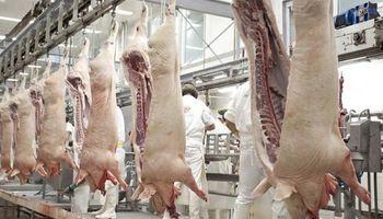 Con inversiones chinas, Argentina busca producir 9 millones de toneladas de carne de cerdo