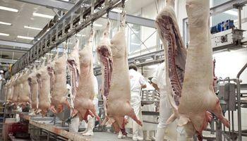 """El sector porcino señaló que la actividad es rentable y que con apoyo """"no tiene techo"""""""