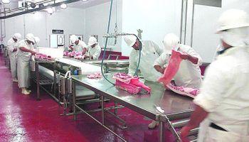 Cerdo: firmas líderes se unieron para exportar