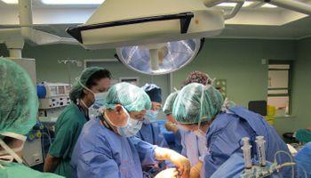Trasplantan con éxito el riñón de un cerdo a una persona