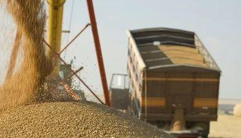 Fijan un nuevo acuerdo salarial para trabajadores que manipulan y almacenan granos y producen frutillas
