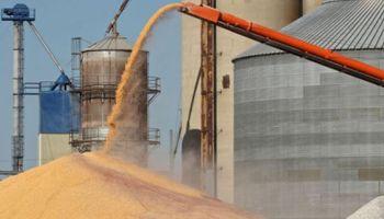 Tras apertura parcial de exportación, se embarcan 127.500 toneladas de trigo