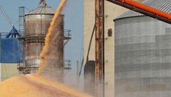 Economía diseña las condiciones para lanzar el bono pedido por las cerealeras