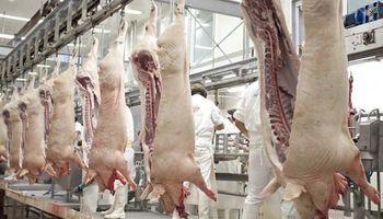 Cierran un frigorífico de cerdos por casos de coronavirus