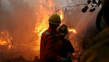Chile: más de 18 mil efectivos siguen la lucha contra 131 focos de incendio