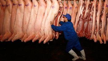 China: el desplome del cerdo impacta sobre la demanda de carne y soja del gigante asiático